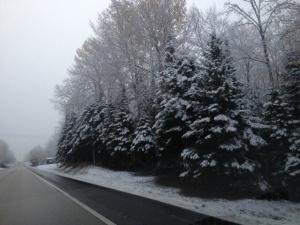 a fall snow