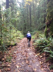 Bike riding at Lake Padden